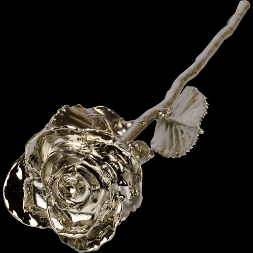 A 17Inch Platinum Dipped Rose