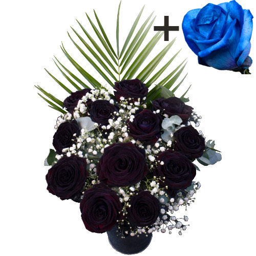 A single Blue Rose surrounded by 11 Black Roses