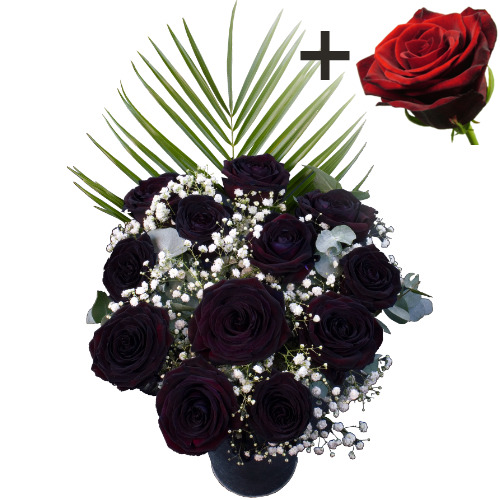 A single Large Headed Red Naomi Rose surrounded by 11 Black Roses