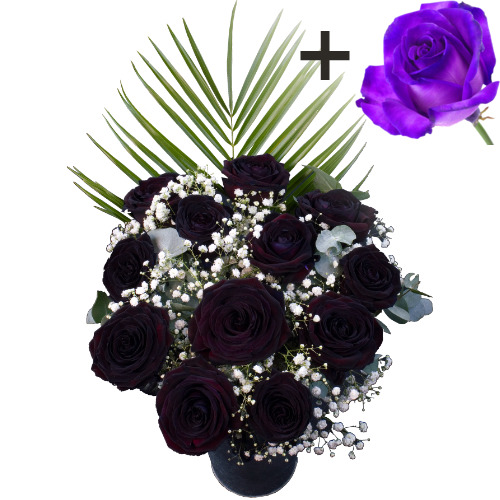 A single Purple Rose surrounded by 11 Black Roses