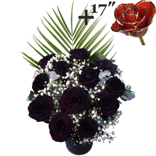 A single 17Inch Gold Trimmed Red Rose surrounded by 11 Black Roses