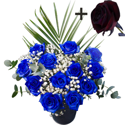 A single Black Rose surrounded by 11 Blue Roses