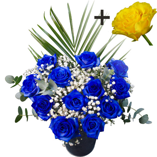 Image of A single Yellow Rose surrounded by 11 Blue Roses