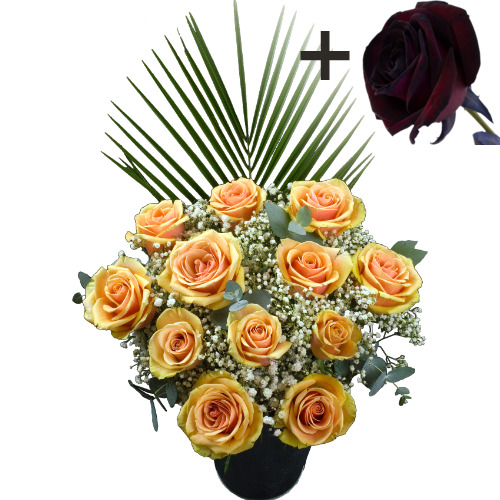 A single Black Rose surrounded by 11 Peach Roses