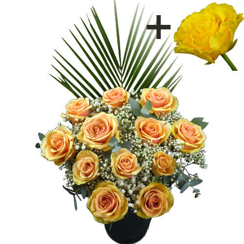 A single Yellow Rose surrounded by 11 Peach Roses