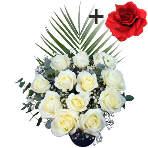 A single Red Silk Rose surrounded by 11 White Roses