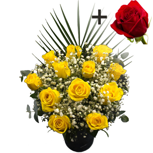 Image of A single Bright Red Freedom Rose surrounded by 11 Yellow Roses