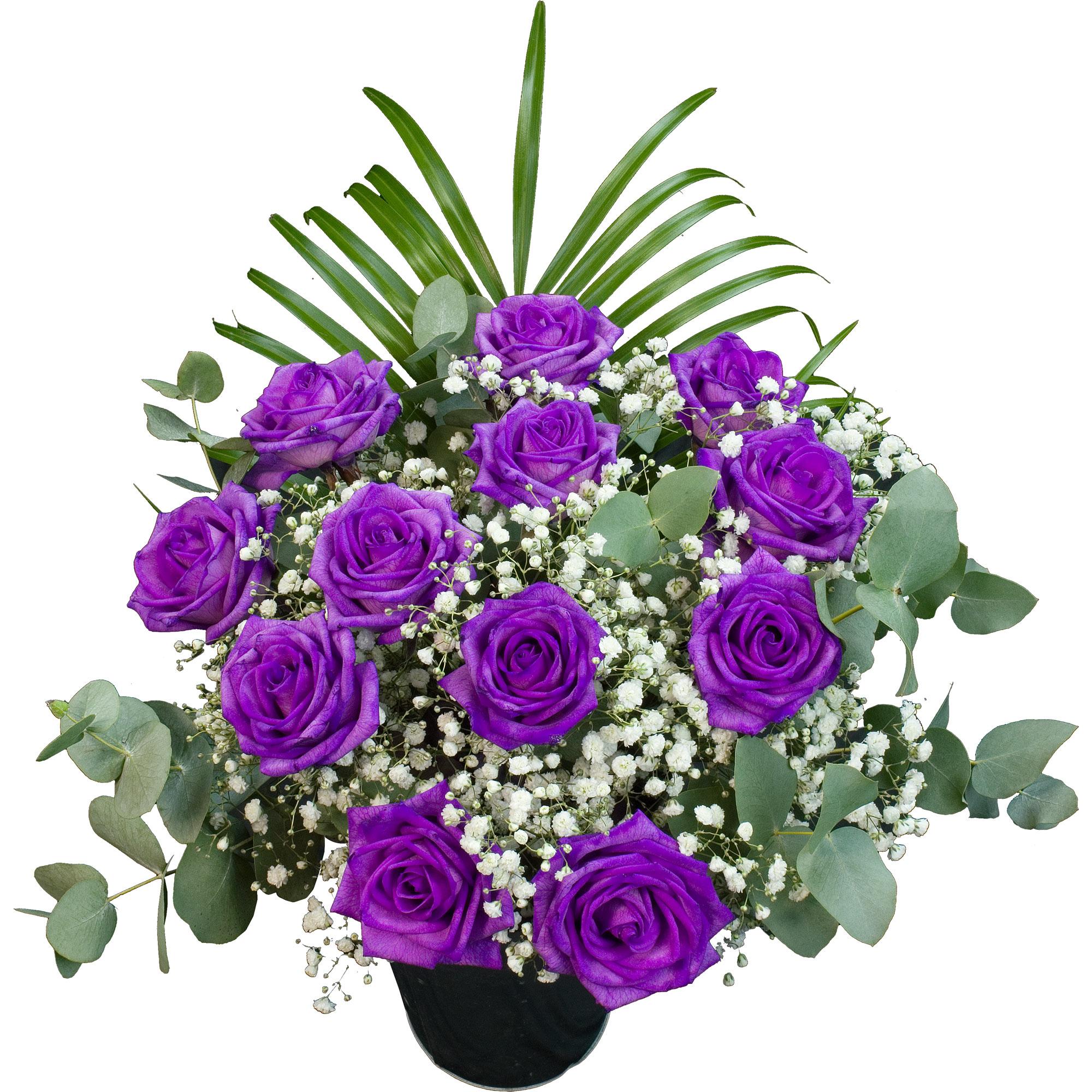 Flowers 12 Purple Roses