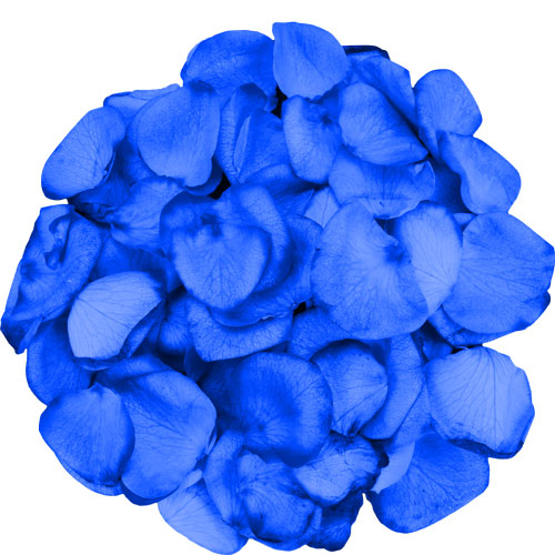 1 Jug of BLUE Rose Petals