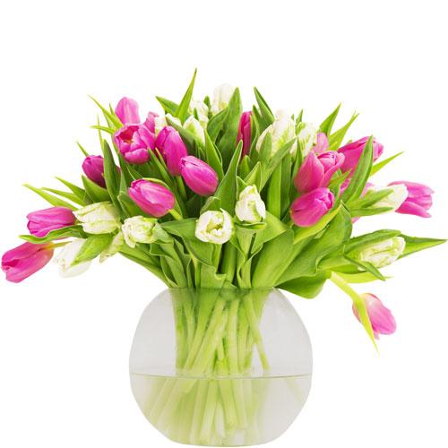 Tulip Time Bouquet